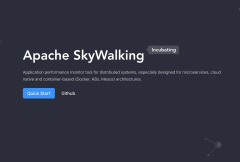 SkyWalking DevCon 2019