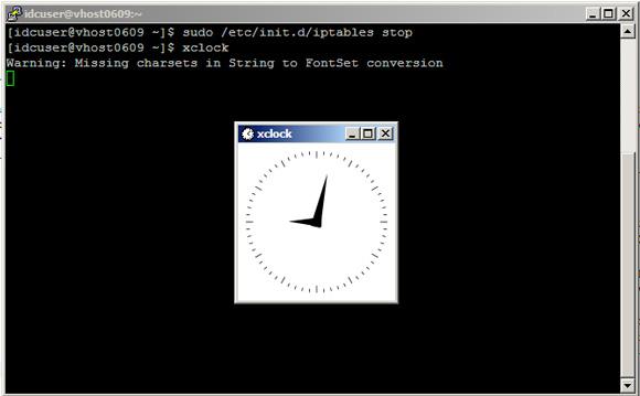 禁用 iptables 并测试 X forwarding