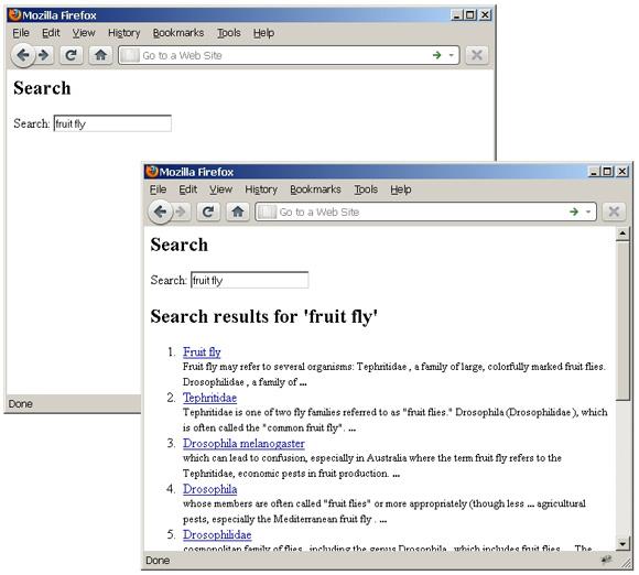 Web 表单截屏展示了 Wikipedia 对短语 'fruit fly' 的搜索及其结果