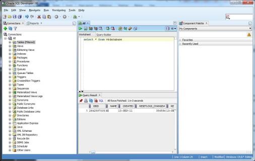 SQLDeveloper_3.jpg