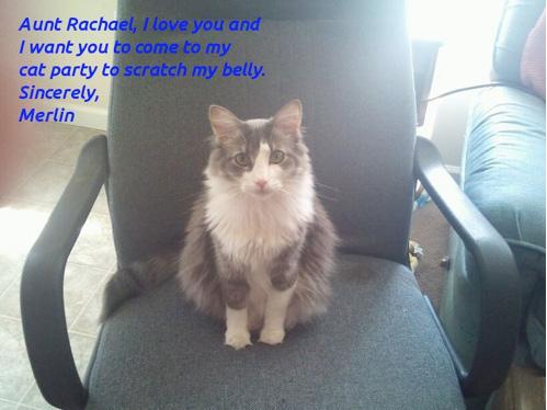 显示为 Rachael 阿姨的邀请生成的图像版本的图片