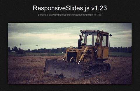 responsive-slides
