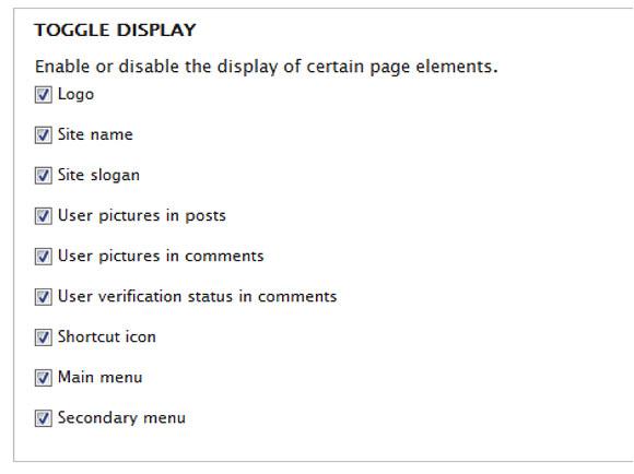 主题特性设置页面的复选框屏幕截图