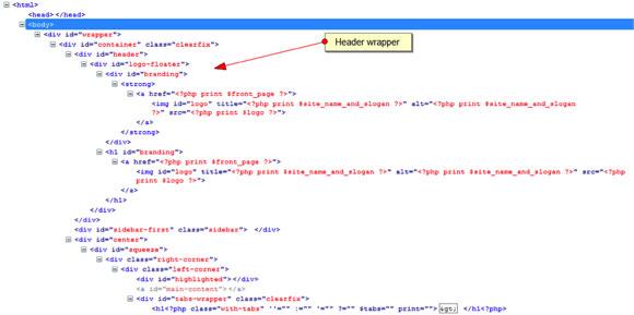 在浏览器中显示 page.tpl.php 源代码的屏幕截图