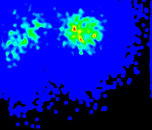 使用Python绘制热图的库pyHeatMap 使用Python绘制热图的库pyHeatMap