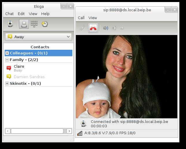 视频会议系统 Ekiga