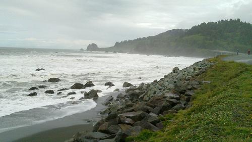 The coastal road in Oregon