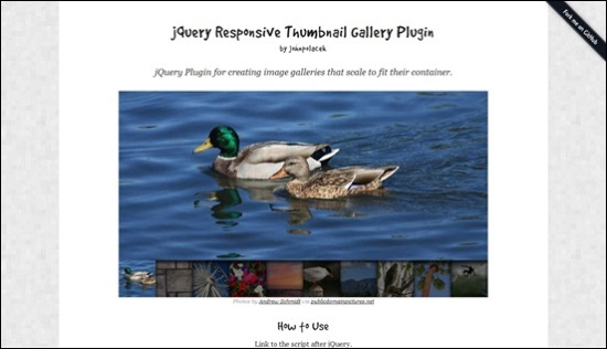 Free Responsive jQuery Slider and Gallery Plugin