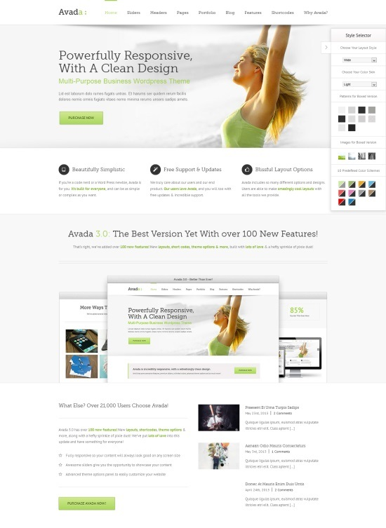Responsive-Wordpress-Themes-2