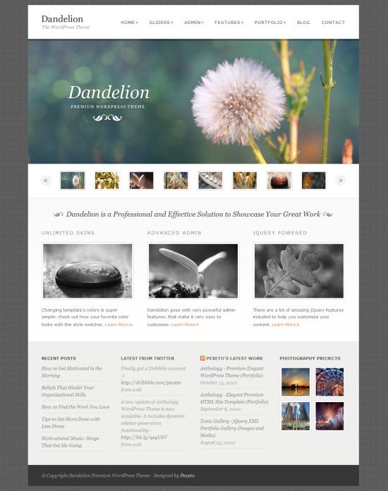 Responsive-Wordpress-Themes-9
