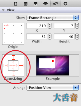 Autosizing attributes for the image view