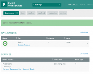 Space 300x239 How to Get Started with CloudForge Development Platform in Pivotal CloudFoundry PaaS