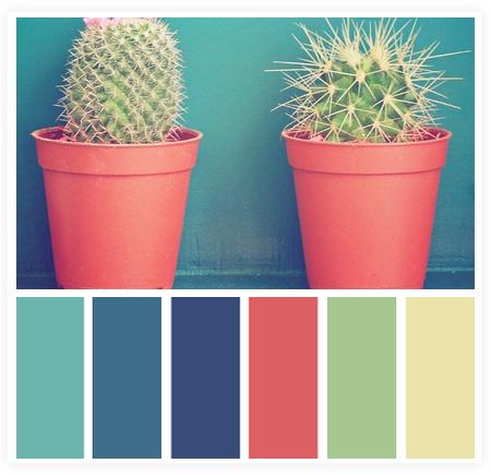 从摄影作品中获取网页颜色搭配技巧