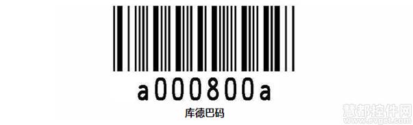 04102948_hIN8.jpg
