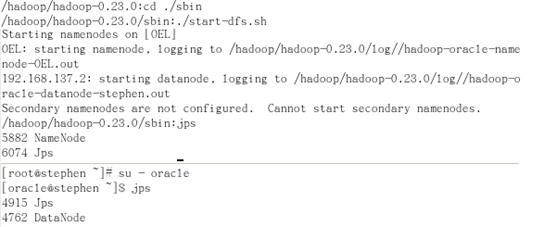 图 5. 启动 Demo dfs 文件系统