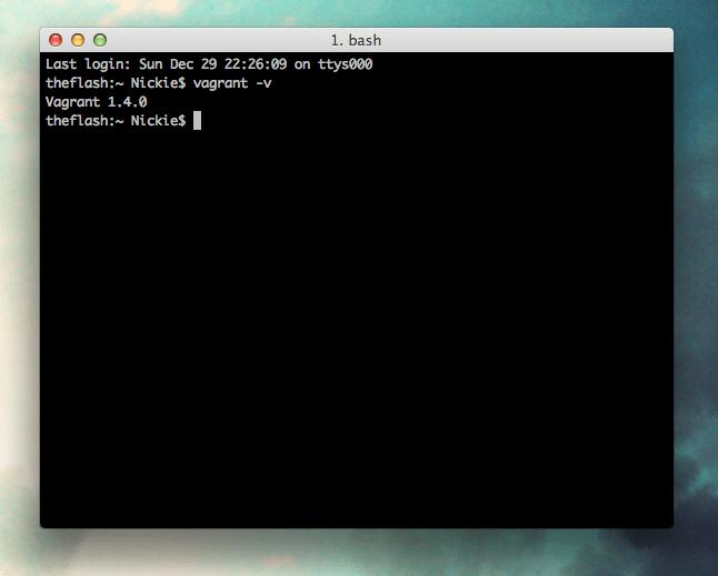 Vagrant Version Command Line
