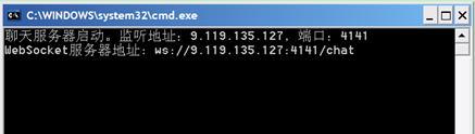图 3. WebSocket 服务器刚启动的画面