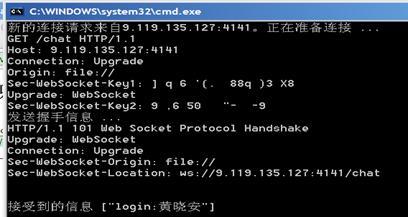 图 4. 有客户端连接到 WebSocket 服务器的