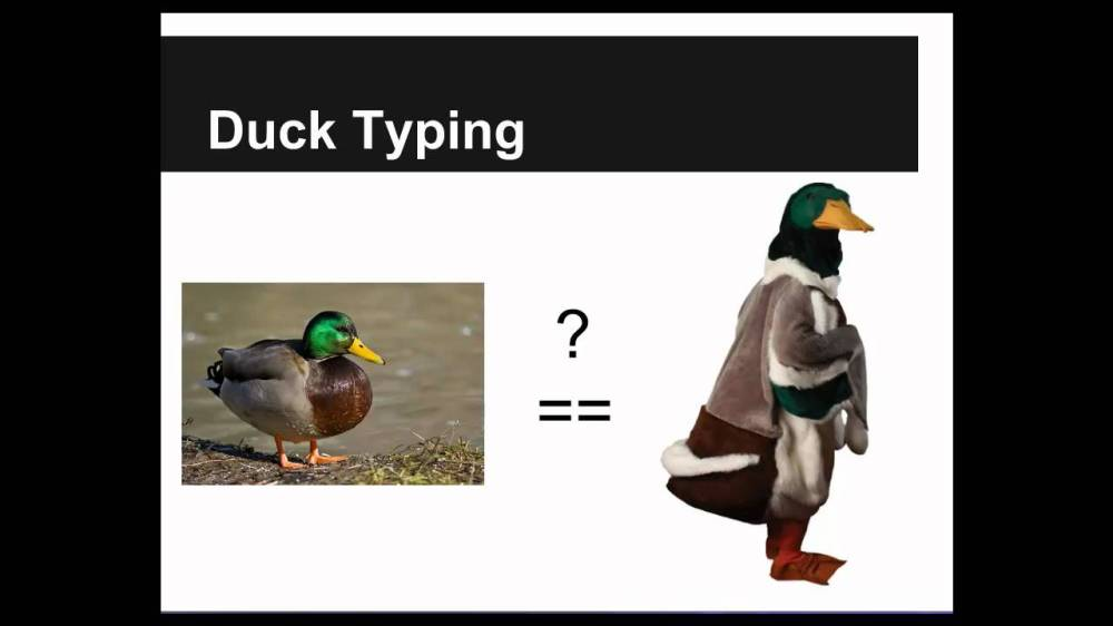 duck typing
