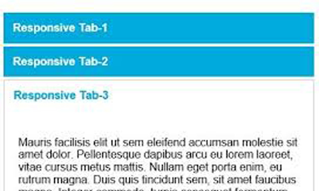easy responsive tab