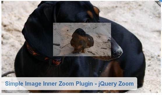 jquery image zoom plugins