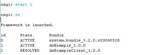 图示10:启动dsExample Bundle