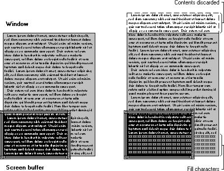 Screen buffer window