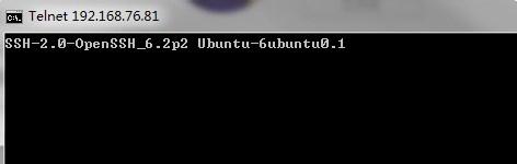 Ubuntu13.10:[3]如何开启SSH SERVER服务