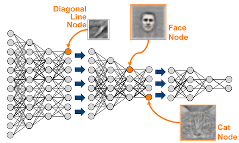 Deep Learning is everywhere!