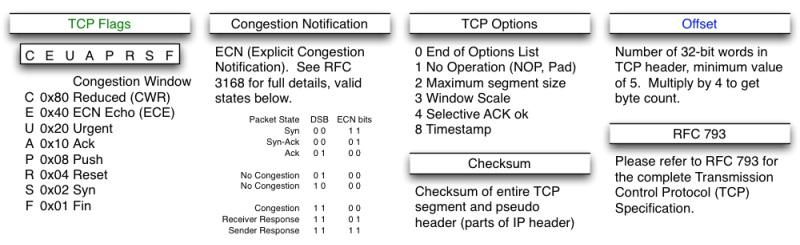 TCP-Header-02