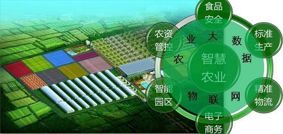 """电子商务网站建设""""互联网+""""与""""智慧农业"""""""
