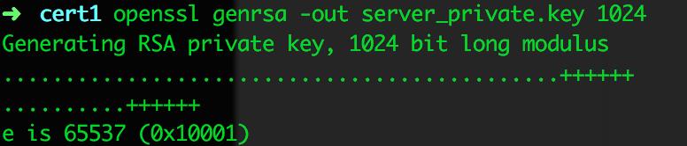 生成服务器私钥文件