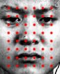 计算机视觉时代的识图技术 | 码云周刊第 28 期-Gitee 官方博客