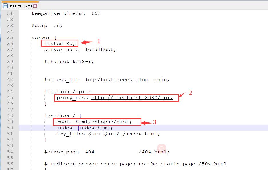 nginx.conf 配置文件
