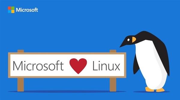 真爱!Linux子系统登陆Windows服务器