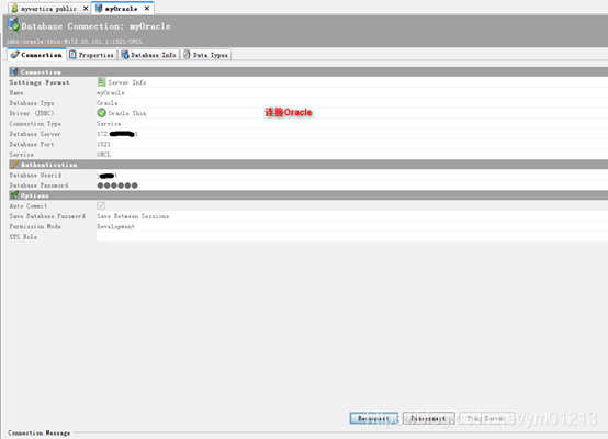 DbVisualizer 安装与数据库连接