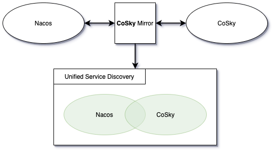 CoSky-Mirror