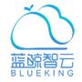 騰訊藍鯨開源 DevOps 項目