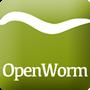 秀丽隐杆线虫模型 OpenWorm