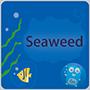 分布式文件系统 SeaweedFS