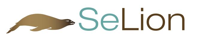 自动化测试工具 SeLion