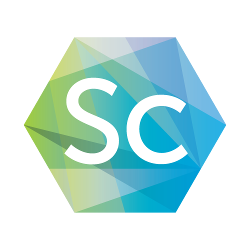 高可扩展实时引擎 SocketCluster
