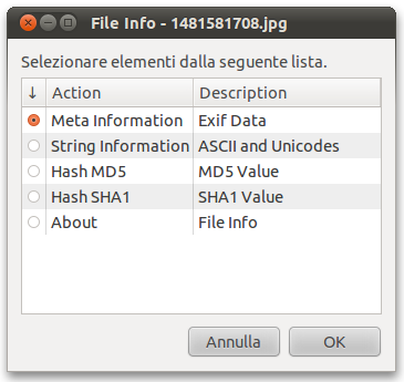 FileInfo