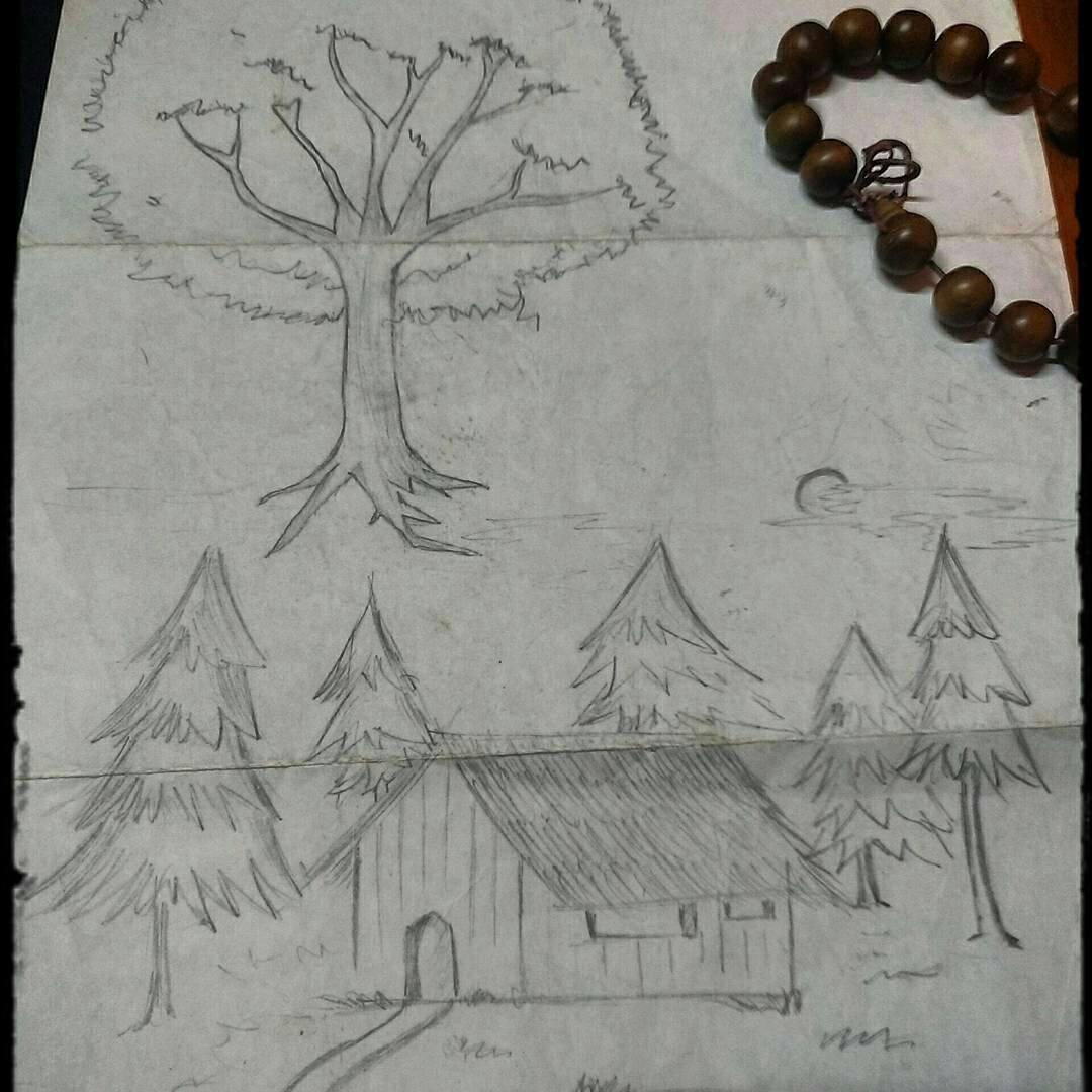 数据结构中你需要知道的关于树的一切(Everything you need to know about tree data structures)