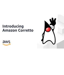 OpenJDK 发行版 Corretto