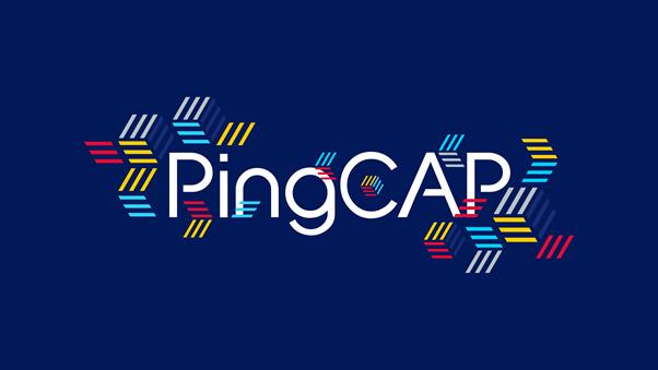 TiDB 开发商 PingCAP 完成 D 轮 2.7 亿美元融资