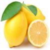 柠檬osc