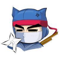 ninja911