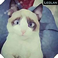 leolan