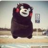 熊小熊会写代码哦